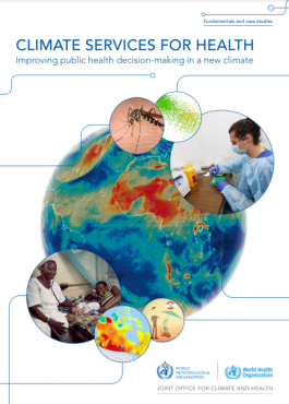 Cover Climate Services Health Case Studies