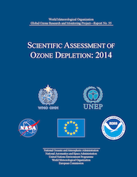 Scientific Assessment of Ozone Depletion