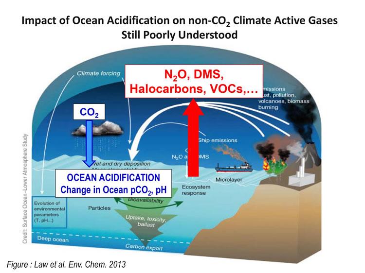 impact of ocean acidification on non-CO2 fluxes