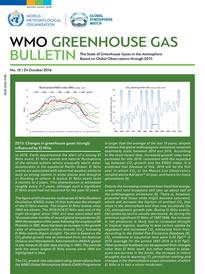 GHG Bulletin 12