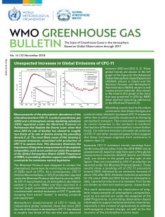 Cover of the WMO GHG Bulletin No. 14