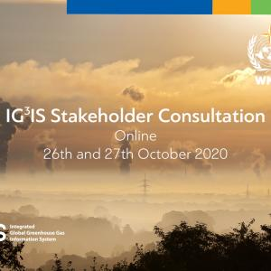 IG3IS stakeholder consultation flyer